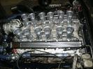 Jaguar V12_1